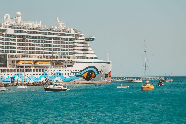 Abbildung eines Kreuzfahrtschiffs